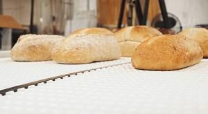 Bread Conveyor