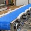 Eaglestone TrackIQ Sorting Conveyor